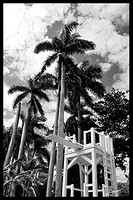 EDIISON'S DIVING BOARD FORT MYERS wsigFB (12) copy 2